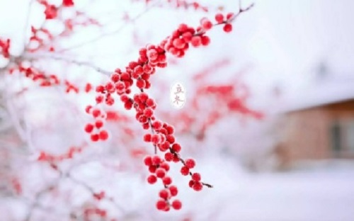冬季白癜风病情稳定,手术祛白省力一半!